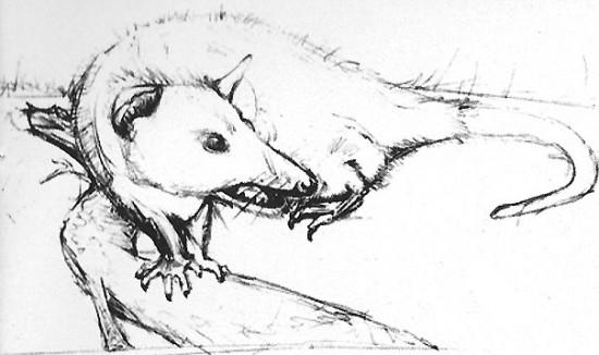 2. Los bocetos a lápiz permiten probar estilos, texturas, proporciones y perspectivas de una forma más sencilla.