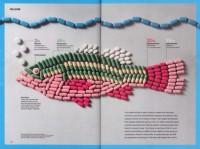 Visualización de información y Diseño editorial