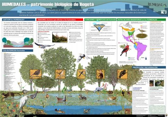 Infografía sobre los Humedales de Bogotá (Infotipos)